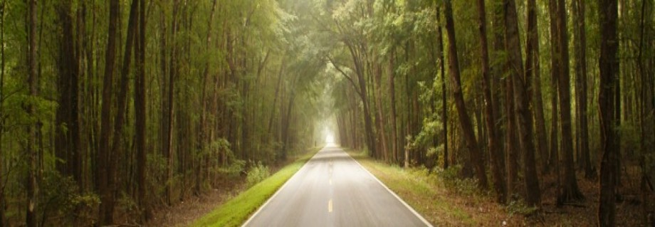 cropped-cropped-road-to-canaan-1.jpg